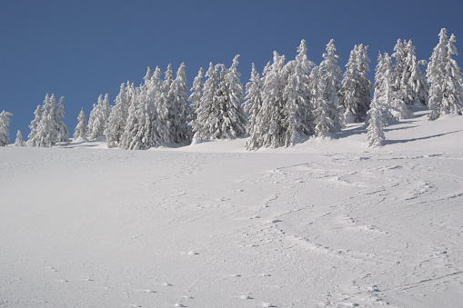 グルノーブル「Winter landscape」:スマホ壁紙(11)