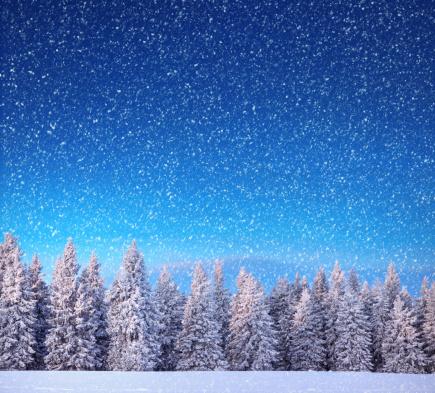 冬「冬の風景」:スマホ壁紙(6)
