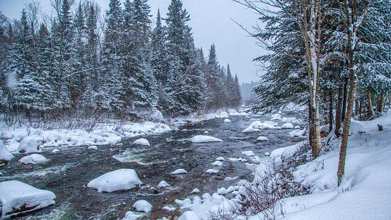 Ecosystem「Winter landscape.」:スマホ壁紙(5)