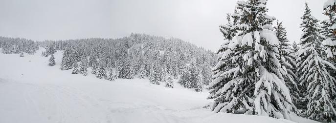 グルノーブル「Winter landscape」:スマホ壁紙(10)
