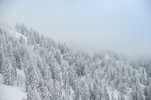 グルノーブル「Winter landscape」:スマホ壁紙(14)