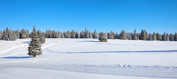 スキー「冬の風景」:スマホ壁紙(14)