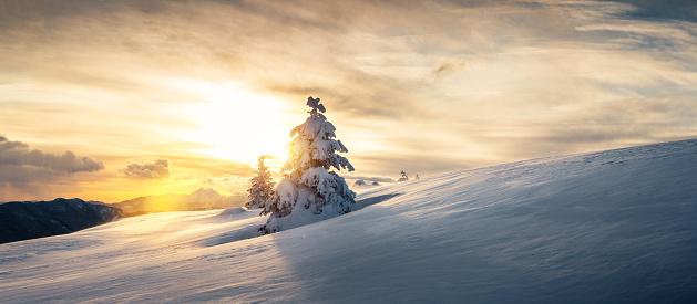 Perfection「Winter Landscape At Sunset」:スマホ壁紙(8)