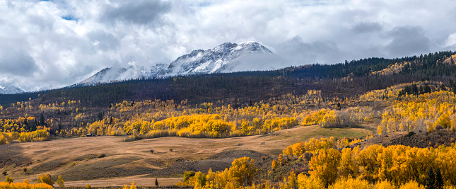 Aspen Tree「Gore Range autumn view」:スマホ壁紙(6)