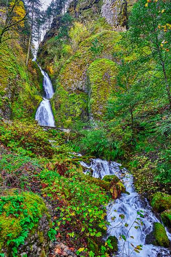 Oneonta Gorge「Historic Columbia River Highway,Oregon,USA」:スマホ壁紙(6)