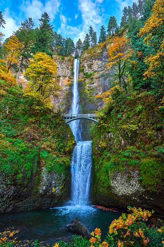 Oneonta Gorge「Historic Columbia River Highway,Oregon,USA」:スマホ壁紙(0)