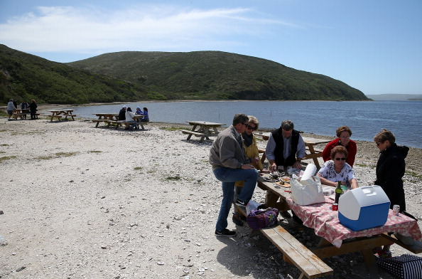 Wilderness Area「Bay Area Oyster Farm Takes Appeals Of Federal Waters Use Case To Supreme Court」:写真・画像(13)[壁紙.com]