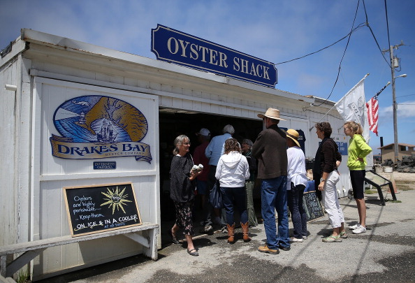 Wilderness Area「Drakes Bay Oyster Company Marks Closing After Feds Deny Use Of Federal Lands」:写真・画像(9)[壁紙.com]