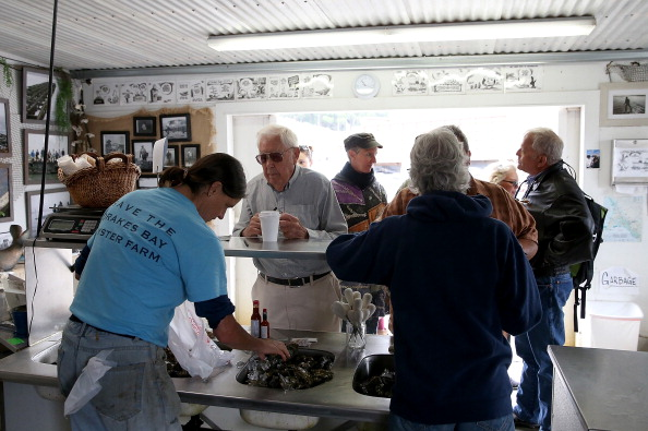 Wilderness Area「Drakes Bay Oyster Company Marks Closing After Feds Deny Use Of Federal Lands」:写真・画像(13)[壁紙.com]