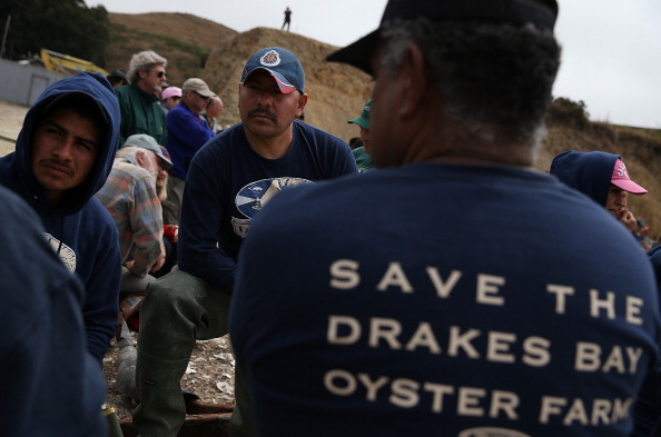Wilderness Area「Drakes Bay Oyster Company Marks Closing After Feds Deny Use Of Federal Lands」:写真・画像(12)[壁紙.com]