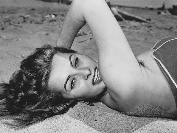 Actress「Sophia Loren」:写真・画像(8)[壁紙.com]