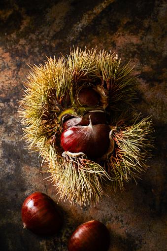 栗「Sweet chestnut on rusty ground」:スマホ壁紙(18)