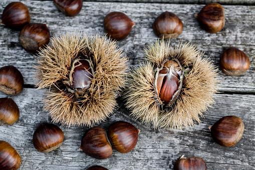 栗「Sweet chestnuts on wood」:スマホ壁紙(7)