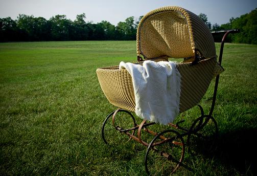 Baby Carriage「Baby Pram in a Field」:スマホ壁紙(4)