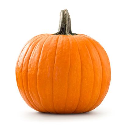 Pumpkin「Pumpkin」:スマホ壁紙(12)