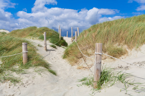 Chichester「England, Sussex, Chichester, Way through sand dune on beach at West Wittering」:スマホ壁紙(14)