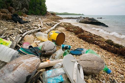 Mamanuca Islands「Litter on Beach on Malolo Island」:スマホ壁紙(2)