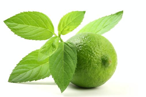Mint Leaf - Culinary「Lime with Mint Leaves」:スマホ壁紙(1)