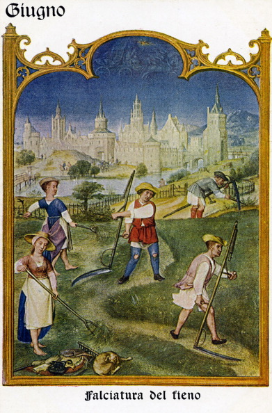 16th Century「Grimani Breviary (Breivario Grimani) - June」:写真・画像(4)[壁紙.com]