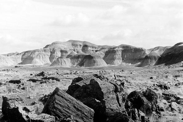 Wilderness Area「Petrifed Forest National Park, Arizona」:写真・画像(9)[壁紙.com]
