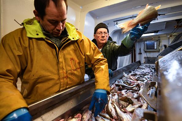 Jeff J Mitchell「Trawler Fishing Off The Coast Of Shetland」:写真・画像(9)[壁紙.com]