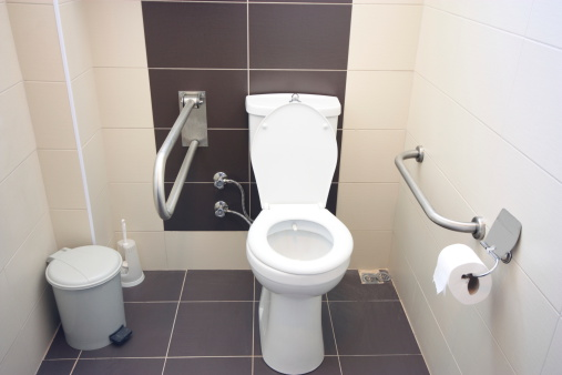 A Helping Hand「Toilet for people with disabilities」:スマホ壁紙(19)