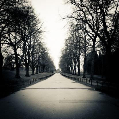 Avenue「Long path」:スマホ壁紙(13)