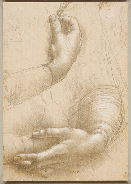Hand「Arms And Female Hands」:写真・画像(2)[壁紙.com]