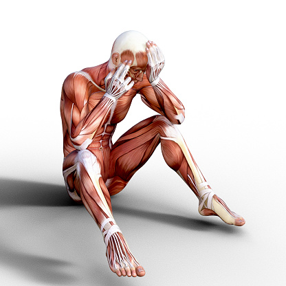 Arm「3D render depicting the anatomy of a human muscular system.」:スマホ壁紙(17)