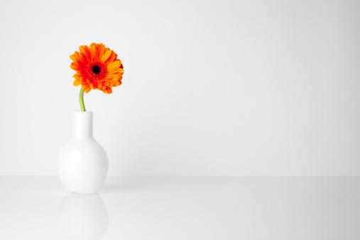 花「ガーベラホワイトの花瓶の花」:スマホ壁紙(4)