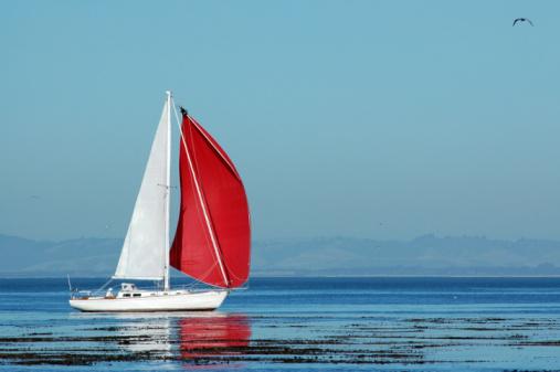 Monterey Bay「red an white sailboat on Monterey Bay, California」:スマホ壁紙(3)