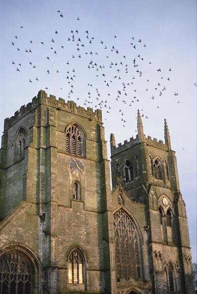 King's Lynn「St Margaret's Church」:写真・画像(14)[壁紙.com]
