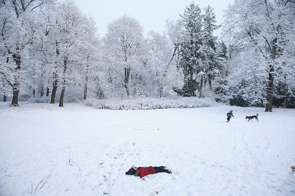 Snowing「First Season's Snowfall In Berlin」:写真・画像(3)[壁紙.com]