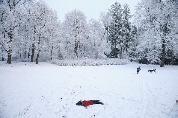 Snowing「First Season's Snowfall In Berlin」:写真・画像(6)[壁紙.com]