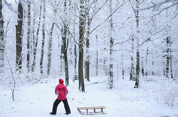 冬「First Season's Snowfall In Berlin」:写真・画像(14)[壁紙.com]