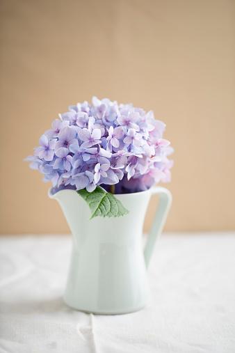 あじさい「Jar with blossom of purple hydrangea」:スマホ壁紙(1)