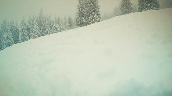 スノーボード「スキートレース」:スマホ壁紙(19)