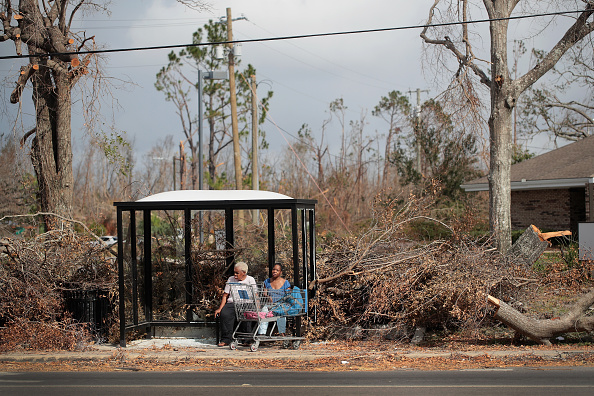 Bus「Recovery Efforts Continue In Hurricane-Ravaged Florida Panhandle」:写真・画像(15)[壁紙.com]