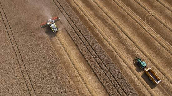 田畑「Combine and Tractor Harvesting Crop」:スマホ壁紙(15)