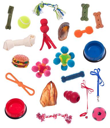 Bone「Dog Equipment」:スマホ壁紙(14)