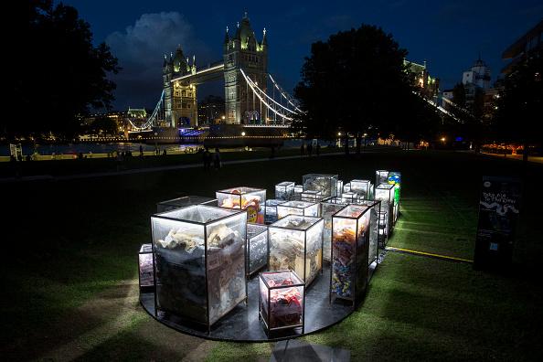 Installation Art「Illuminated Art Installation Highlights Impact Of Plastic Pollution In The River Thames」:写真・画像(2)[壁紙.com]