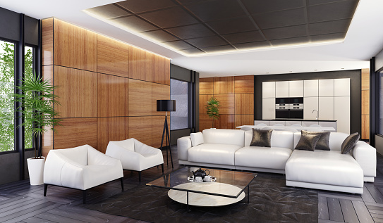 Animal Skin「Luxury minimalist open space living room with kitchen and dining」:スマホ壁紙(11)