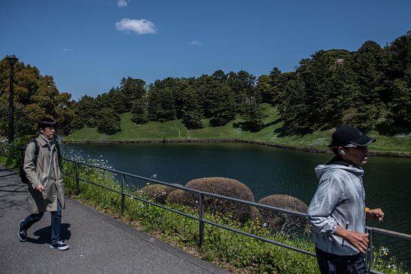 Chrysanthemum「Daily Life Around Tokyo's Imperial Palace」:写真・画像(17)[壁紙.com]