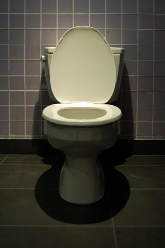Toilet「Lovely Throne」:スマホ壁紙(18)
