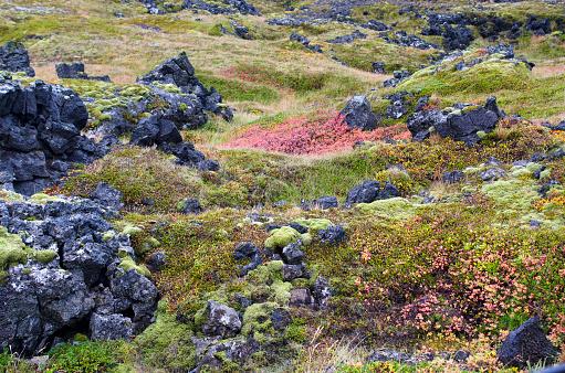 Lava「Snaefellsjokull National Park   Area」:スマホ壁紙(5)