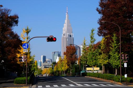Meiji Jingu Gaien「View Near  Jingu Gaien」:スマホ壁紙(6)