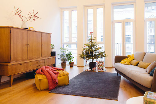 トウヒ「Modern loft living room with potted blue spruce Christmas tree」:スマホ壁紙(13)