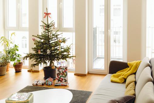 トウヒ「Modern loft living room with potted blue spruce Christmas tree」:スマホ壁紙(13)