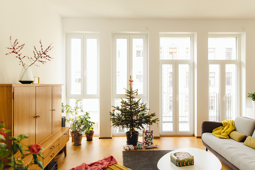 Christmas Decoration「Modern loft living room with potted blue spruce Christmas tree」:スマホ壁紙(9)