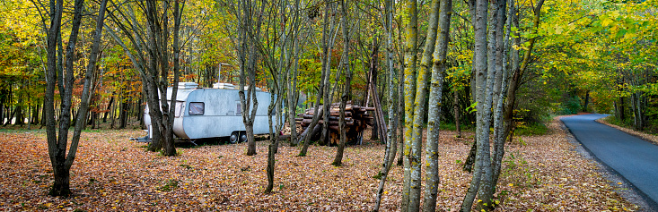 Lost「Old camping trailer in the woods」:スマホ壁紙(11)
